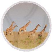Giraffes Round Beach Towel