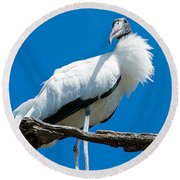Glamorous Wood Stork Round Beach Towel