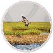 Gliding Over A Shell Island Round Beach Towel