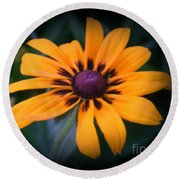 Gloriosa Daisy Round Beach Towel