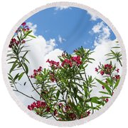 Glorious Fragrant Oleanders Reaching For The Sky Round Beach Towel