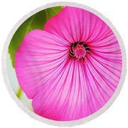 Glorious In Pink Round Beach Towel