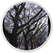 Glorious Live Oaks With Framing Round Beach Towel