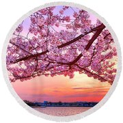 Glorious Sunset Over Cherry Tree At The Jefferson Memorial  Round Beach Towel