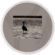 Glossy Ibis Round Beach Towel