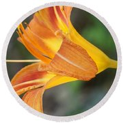 Glow Of A Lily Round Beach Towel