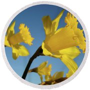 Glowing Daffodil Flowers Floral Art Baslee Troutman Round Beach Towel