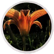 Glowing Day Lily Round Beach Towel