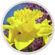 Glowing Yellow Daffodils Art Prints Pink Blossoms Spring Baslee Troutman Round Beach Towel