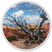 Gnarly - Bryce Canyon Round Beach Towel