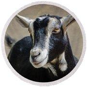 Goat 2 Round Beach Towel