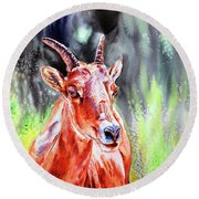 Goat From The Mountain Round Beach Towel