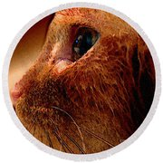 Gold Cat Profile Round Beach Towel