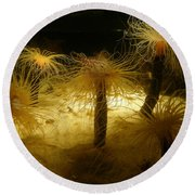 Gold Sea Anemones Round Beach Towel