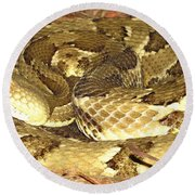 Gold Viper Round Beach Towel