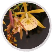 Gold Yellow Orchid  Round Beach Towel