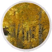 Golden Aspen Round Beach Towel