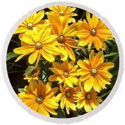 Golden Eyed Susans Round Beach Towel