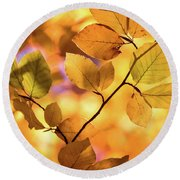 Golden Foliage Round Beach Towel