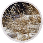 Golden Grasses In Sun And Snow Round Beach Towel