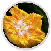 Golden Hibiscus - Hawaii Round Beach Towel