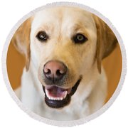 Golden Lab Round Beach Towel