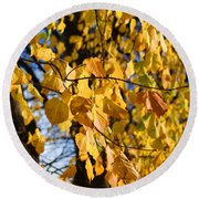 Golden Leaves Round Beach Towel