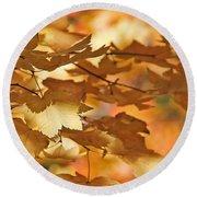 Golden Light Autumn Maple Leaves Round Beach Towel