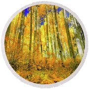 Golden Light Of The Aspens - Colorful Colorado - Aspen Trees Round Beach Towel