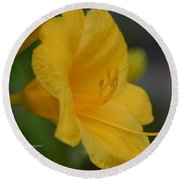 Golden Lily 18-2 Round Beach Towel