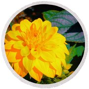 Golden Moment In The Morning Round Beach Towel