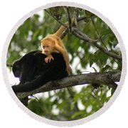 Golden Monkey Round Beach Towel