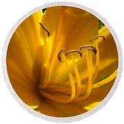 Golden Orange Lily Art Print Lilies Flowers Baslee Troutman Round Beach Towel