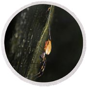 Golden Orb Spider Round Beach Towel