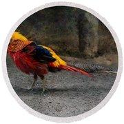 Golden Pheasant Round Beach Towel