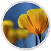 Golden Poppy Reaching For The Skies  Round Beach Towel