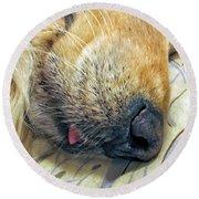 Golden Retriever Dog Little Tongue Round Beach Towel by Jennie Marie Schell