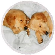 Golden Retriever Dog Puppies Sleeping Round Beach Towel by Jennie Marie Schell