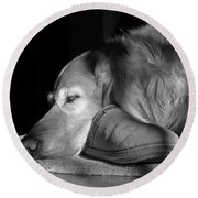 Golden Retriever Dog With Master's Slipper Black And White Round Beach Towel