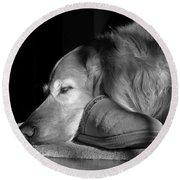 Golden Retriever Dog With Master's Slipper Black And White Round Beach Towel by Jennie Marie Schell
