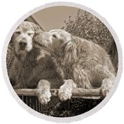 Golden Retriever Dogs The Kiss Sepia Round Beach Towel
