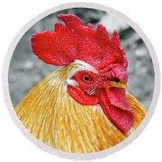 Golden Rooster Portrait Round Beach Towel