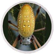 Golden Silk Spider 1 Round Beach Towel