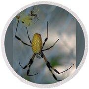 Golden Silk Spider 2 Round Beach Towel