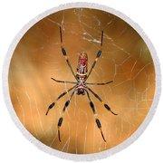 Golden Silk Spider 3 Round Beach Towel