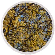 Golden Tree 3 Round Beach Towel