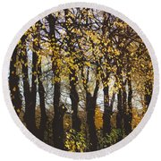 Golden Trees 1 Round Beach Towel