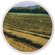 Golden Windrows Round Beach Towel