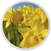 Golden Yellow Daffodil Flower Garden Art Prints Baslee Troutman Round Beach Towel