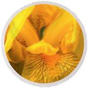 Golden Yellow Iris Round Beach Towel